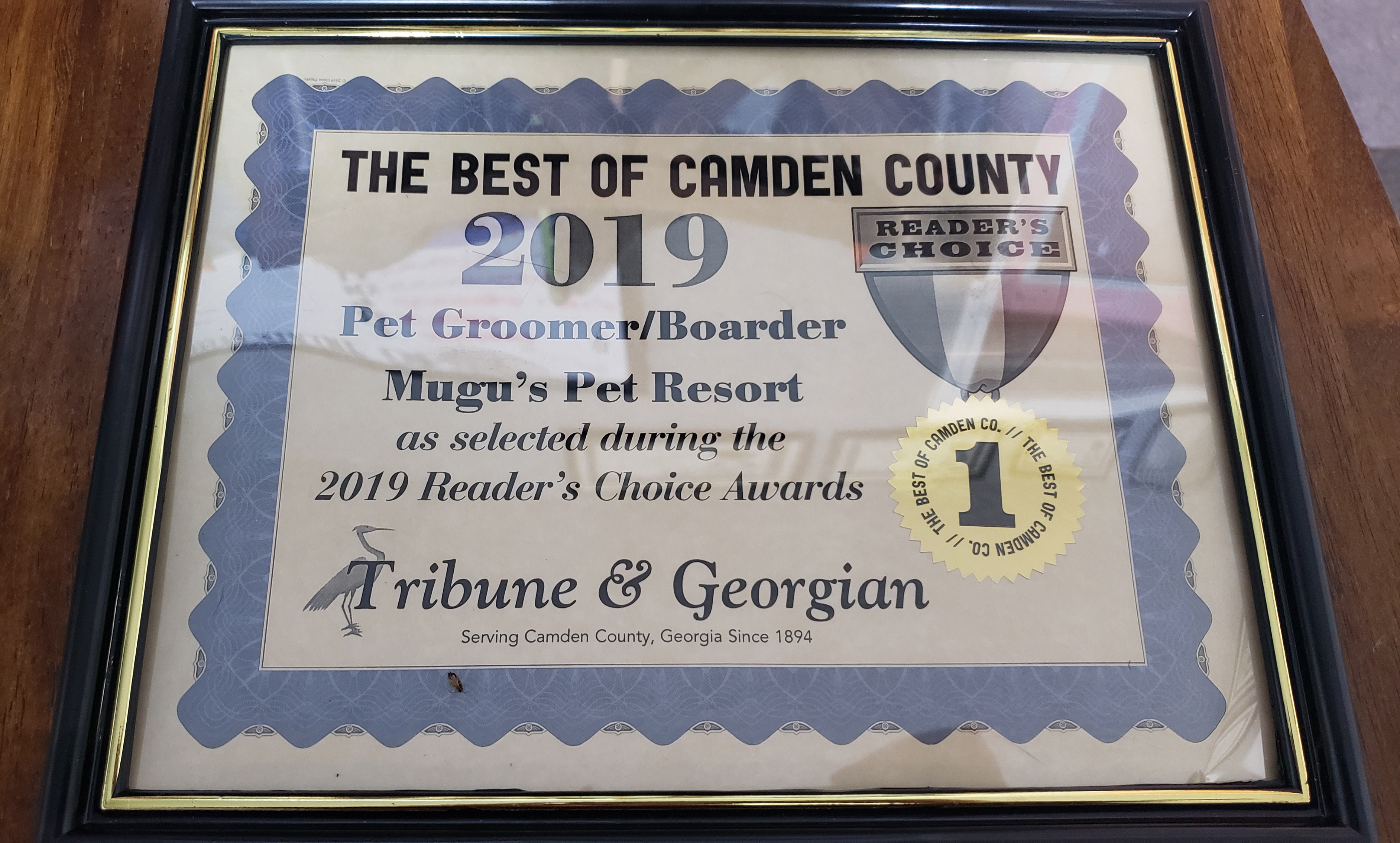 Best in Camden 2019 Best Pet Grooming